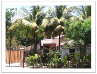 Casa Colibri San Juan Del Sur Nicaragua Villa To Let