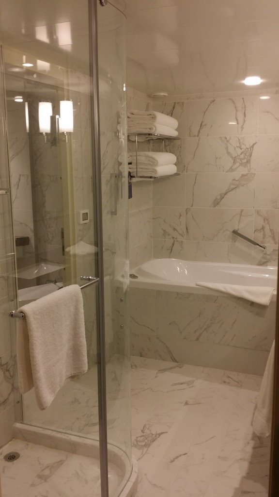 Bathroom of a suite on Britannia